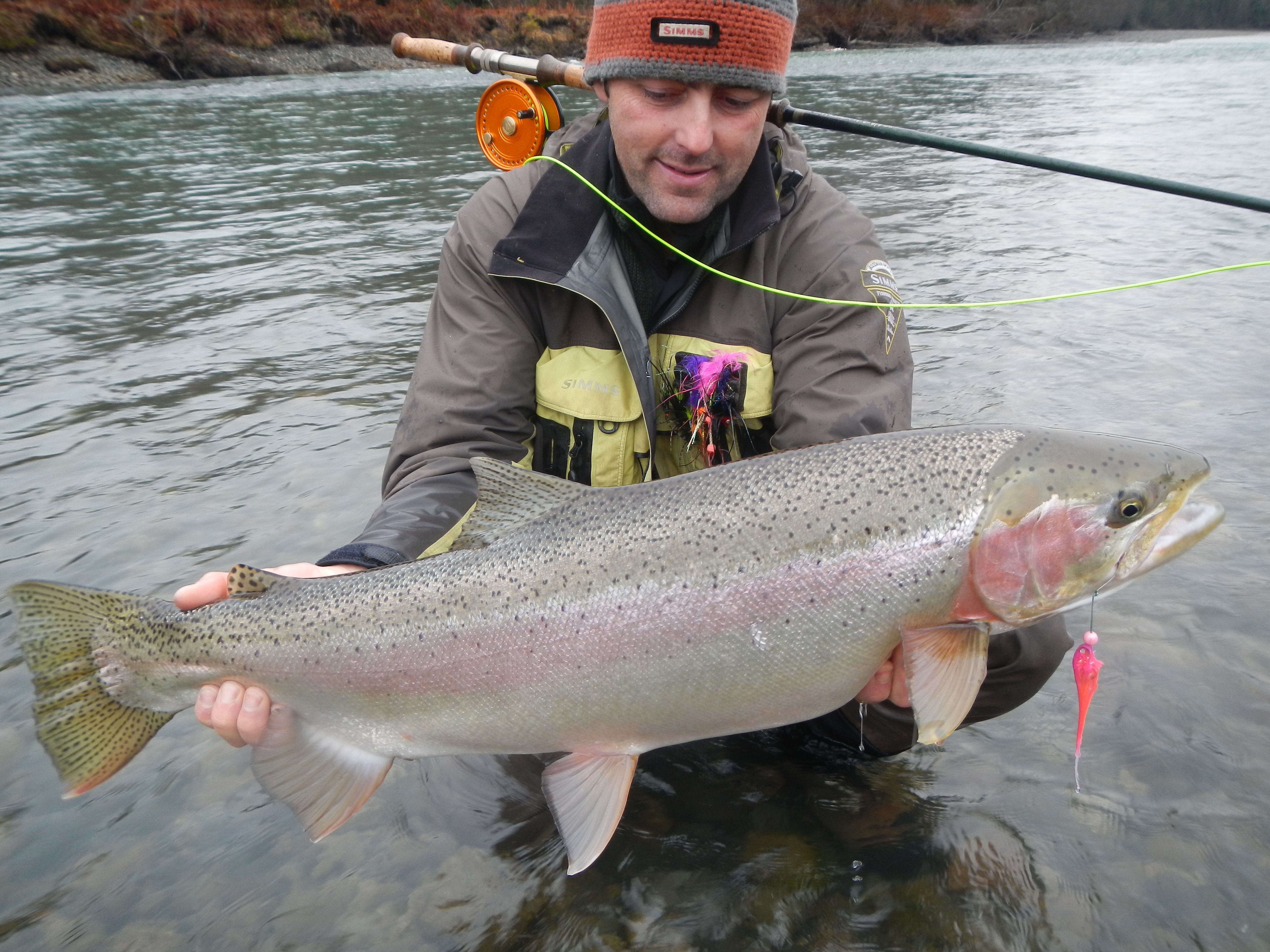 Bc steelhead guides for trophy steelhead salmon on the world bc steelhead guides for trophy steelhead salmon on the world famous skeenanasskitimat rivers westcoast fishing adventures sciox Image collections
