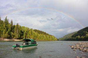 duckworth fishing on the mighty skeena river