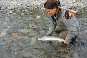 kispiox skeena kitimat nass river spey fishing