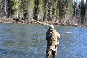 Bell Irving river steelhead fishing