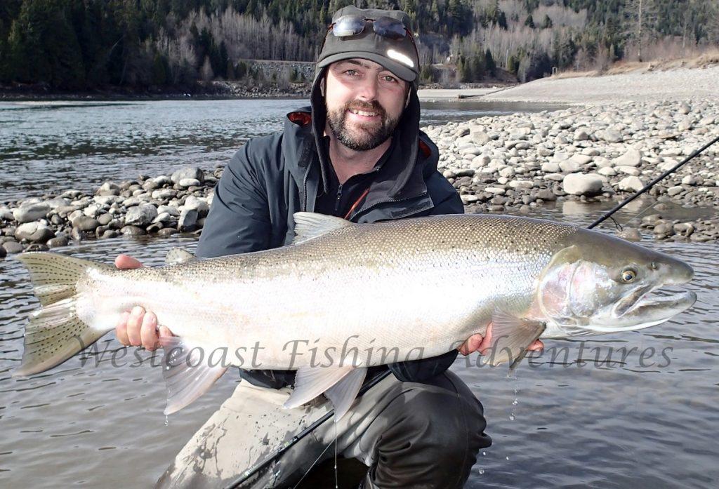 Skeena river spring steelhead for Fly fishing for steelhead