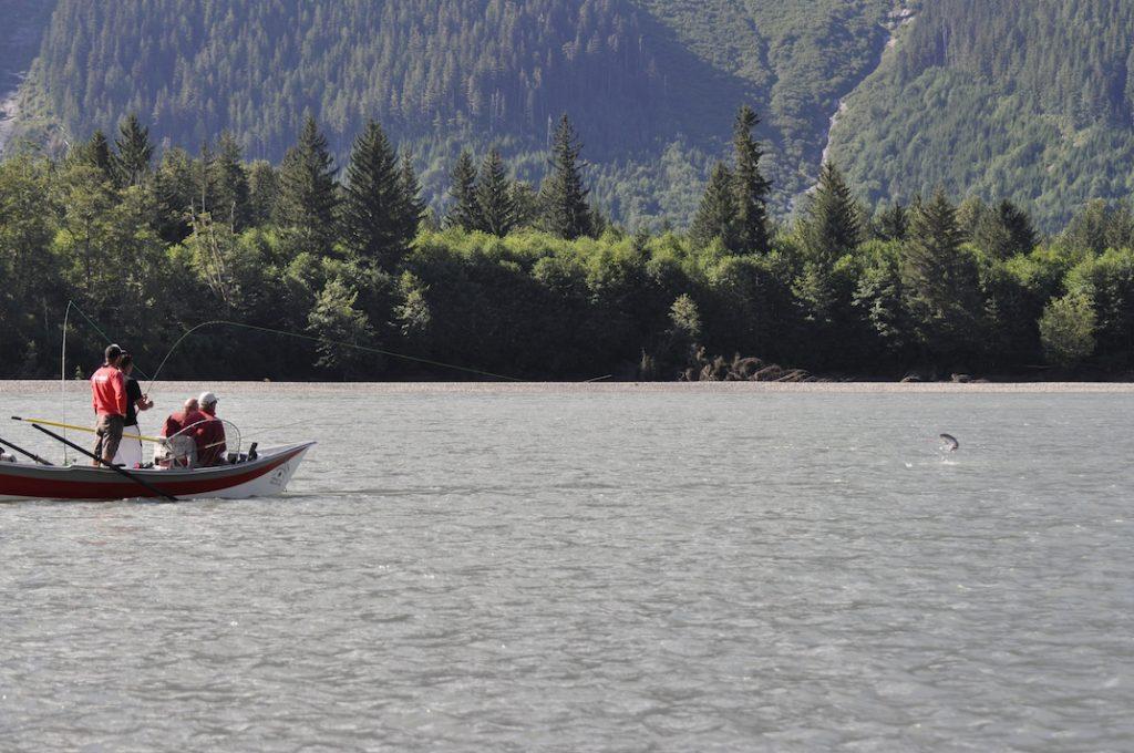 Skeena river drift boat adventures, Steelhead,Coho,Chinook,Sockeye Salmon fishing guides.